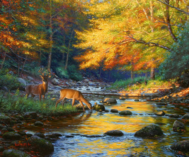 Quiet Encounter by Mark Keathley